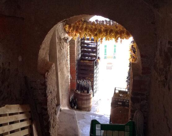 cinque terre wine tours shore excursions from la spezia