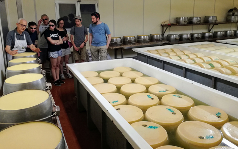 the making of parmigiano cheese, shore excursion from la spezia