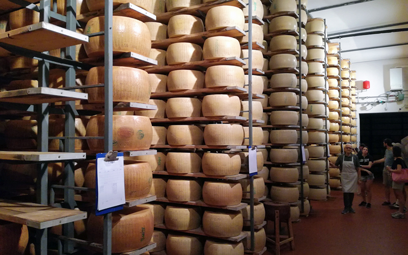 parmigiano cheese private tour